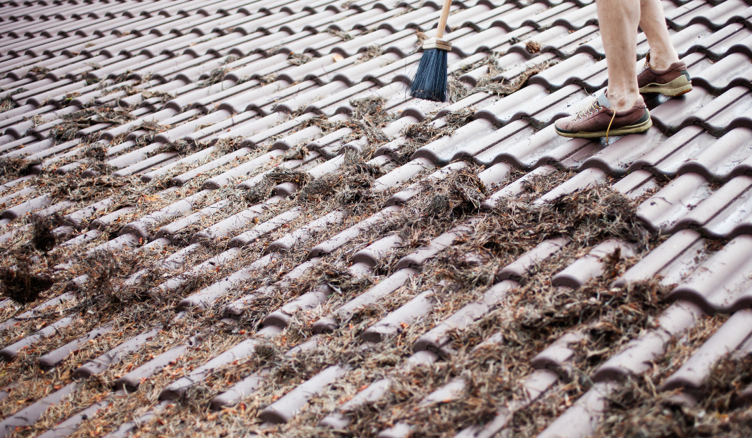 What Are The Benefits of Cleaning Your Roof?